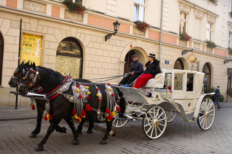 Horse drawn carriage limousine legacy.